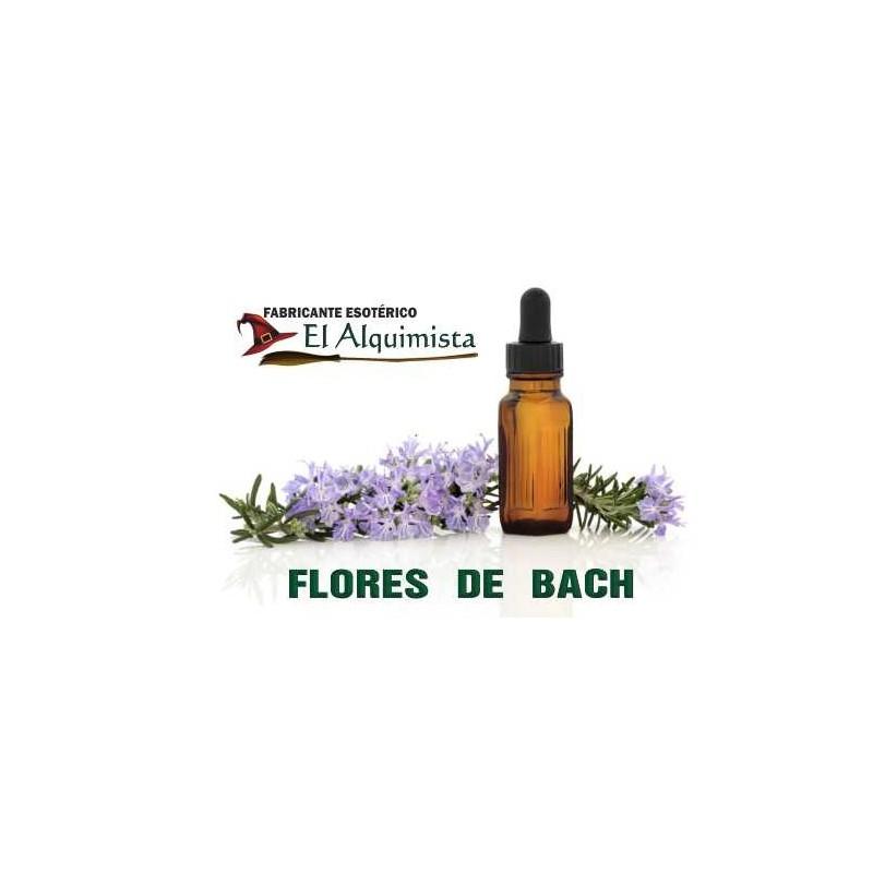 Consulta: FLORES DE BACH
