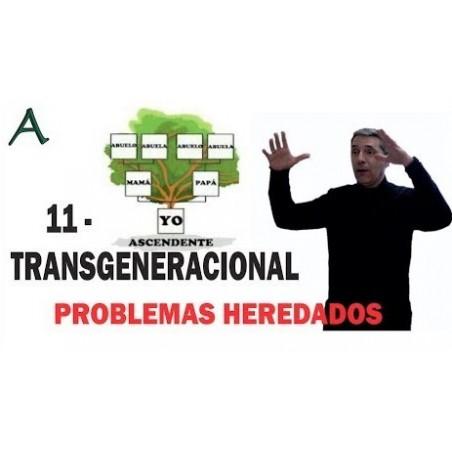 Repetición de problemas - SOLUCIÓN Trangeneracional Historia heredada