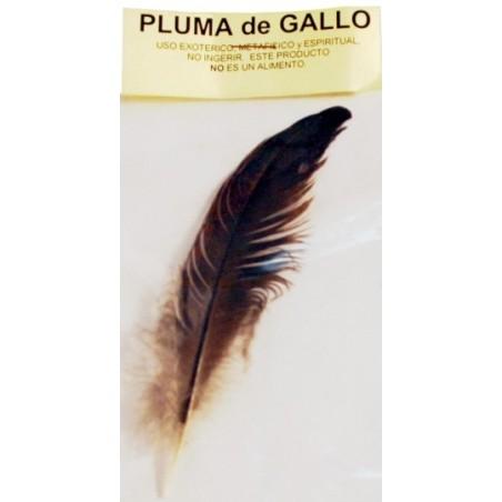 PLUMA DE GALLO